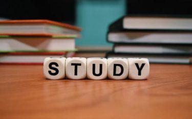 英語転職に向け全力で1週間フィリピン・セブ 留学をやりきった学習効果は?
